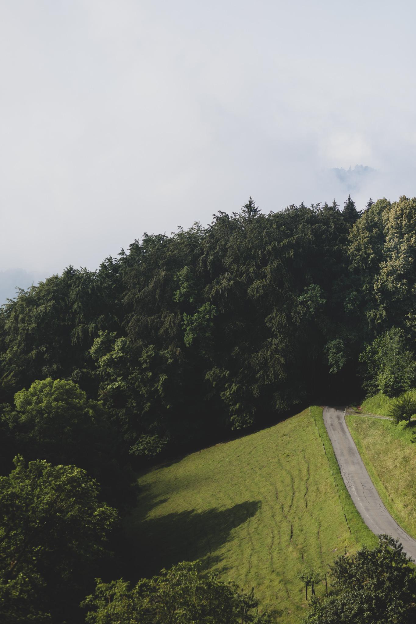 Weingut Daniel Jaunegg Südsteiermark